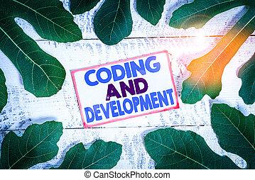 tekst, programmering, vergadering, meldingsbord, het tonen, development., conceptueel, gebouw, programs., coderen, foto, eenvoudig