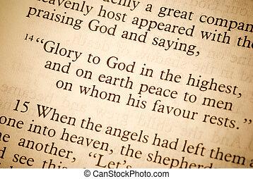 tekst, van, de, bijbel