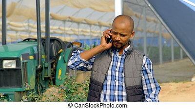 teléfono, móvil, hablar, granja, hombre, 4k, arándano