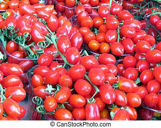 Tel Aviv plum tomatoes in boxes
