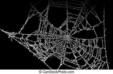 tela de araña, polvoriento