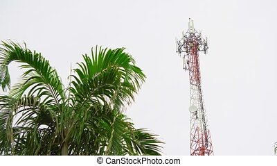 Telecommunication antenna of cellular communication of Internet and television broadcasting. tropical island, asia