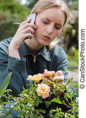 telefone, agricultura, conceito, tecnologia moderna