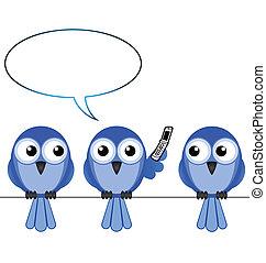 telefone, pássaro, móvel