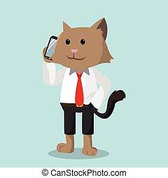 telefoon, kat, kantoor, roepende