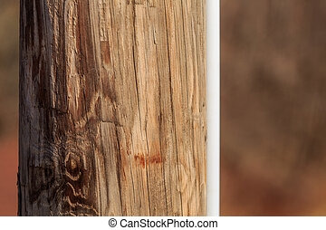 A close up section of a telephone pole.