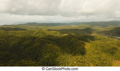 Telephone signal tower among green forest and mountains. Aerial view. Siargao island Philippines.