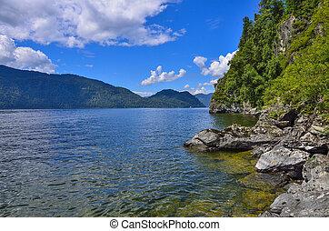 teletskoye, 또는, 황금, lake., altai, 산, 여름, 조경술을 써서 녹화하다
