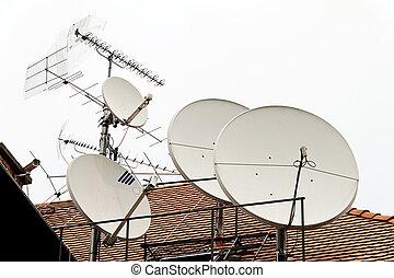 televisión, satélite, antena
