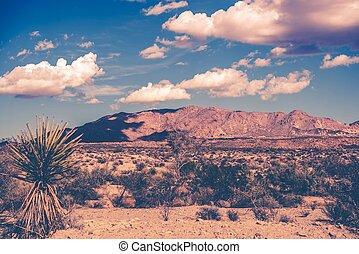tema, california, deserto