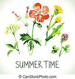 tema, retro, card., fundo, verão, floral, saudação, aquarela...