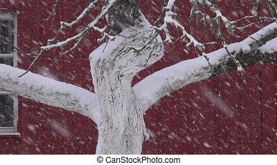tempête neige, hiver, village