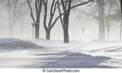 tempête neige, rue, hiver, hd, scène