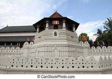 tempel, von, der, zahn, in, kandy, sri lanka