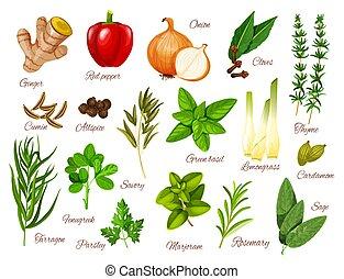 temperos, e, ervas, ícones, de, alimento, ingredientes