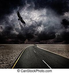 tempestade, pássaro, estrada, em, deserto