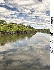 Tempisque River, Costa Rica