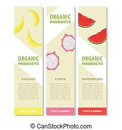 Template design fruits vertical banner.