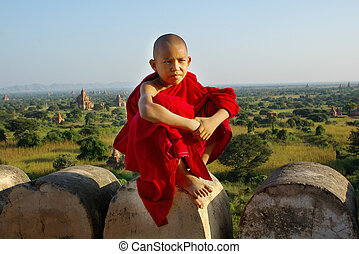 temple, bouddhiste, jeune, fond, moine