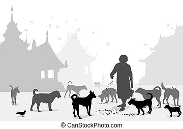 temple, carer, chien