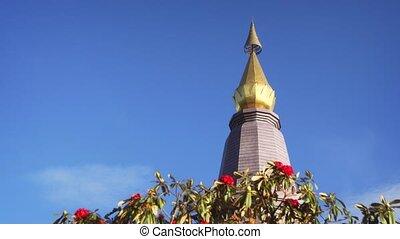Temple on Doi Inthanon, Highest Mountain in Thailand. Stock footage 4k
