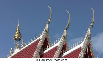 Temple Roof - A cool shot of a Buddhist temple roof top...