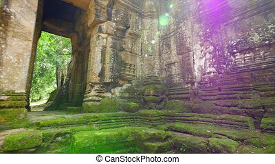 Temple walls and rocks with green moss - A medium shot of...