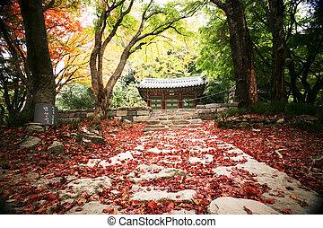 templos, paisagem outono, coréia, seonunsa, sul