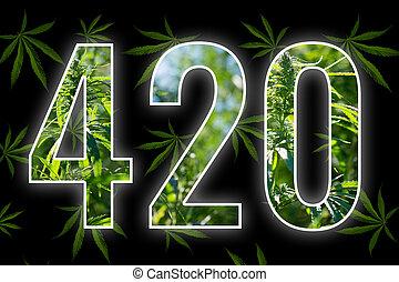 tempo, four-twenty, fumar, marijuana.