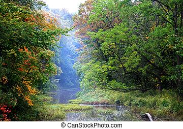 temprano, otoño, escena