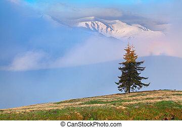 temprano, primavera, montañas., salida del sol