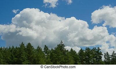 temps, en mouvement, sur, défaillance, ciel bleu, nuages, arbres.