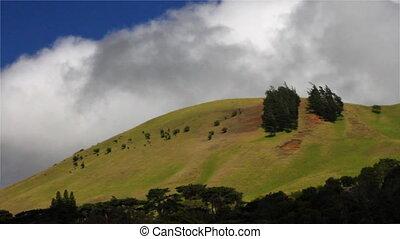 temps, herbeux, colline, défaillance