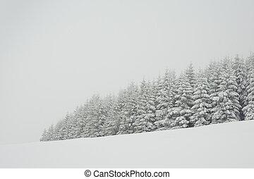 temps, hiver