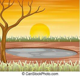 temps, scène, arbre, été, coucher soleil, séché