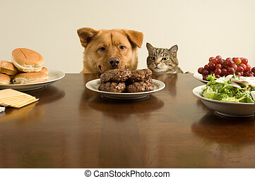 Temptation - This time, we go on the count of one. (Dog and ...