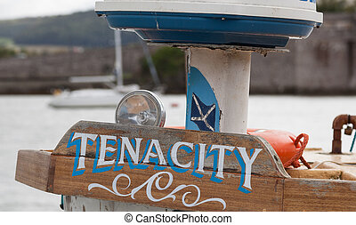 Tenacity - Wooden sign saying tenacity
