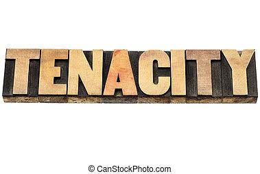 tenacity word in wood type - tenacity word - isolated text...