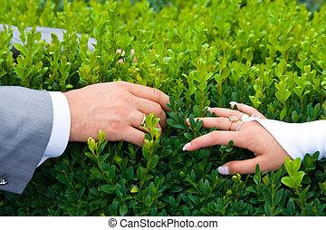 tenant mains, nouveaux mariés
