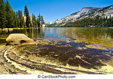 Tenaya Lake at Yosemite National Park