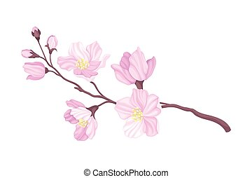 Tender Cherry Blossom Twig as Fragrant Seasonal Foliage with Pink Flowers Vector Illustration