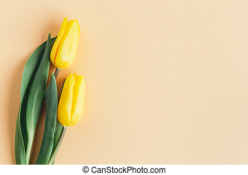 Tender yellow tulips on pastel peach background. Greeting card for Mother's day.