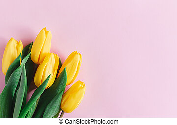 Tender yellow tulips on pastel pink background. Greeting card for Mother's day.
