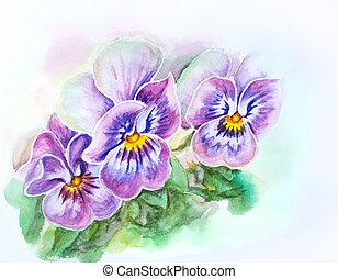 tendre, pensées, flowers., aquarelle, painting.