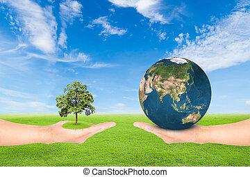 tenencia de la mano, árbol, y, tierra