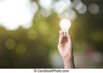 tenencia de la mano, luz, bulb., concepto, verde, energy.
