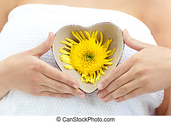 tenencia, mujer, flor, ella, manos