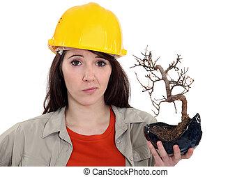 tenencia, trabajador, muerto, construcción, hembra, plant.