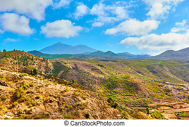 Tenerife - Canary Islands