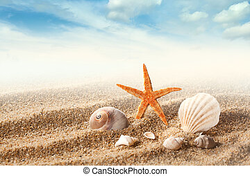 tenger kihámoz, homok, ellen, kék ég